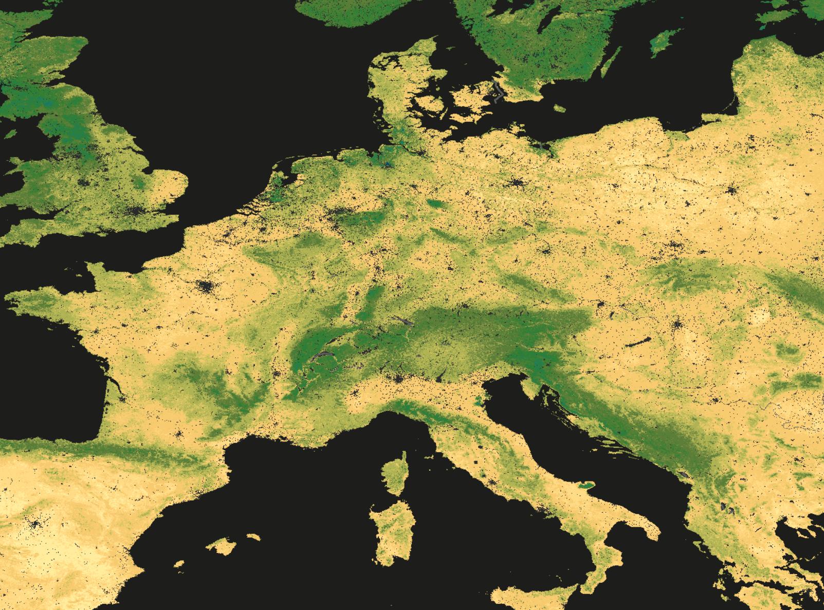 Kohlenstoffgehalt in unseren Böden