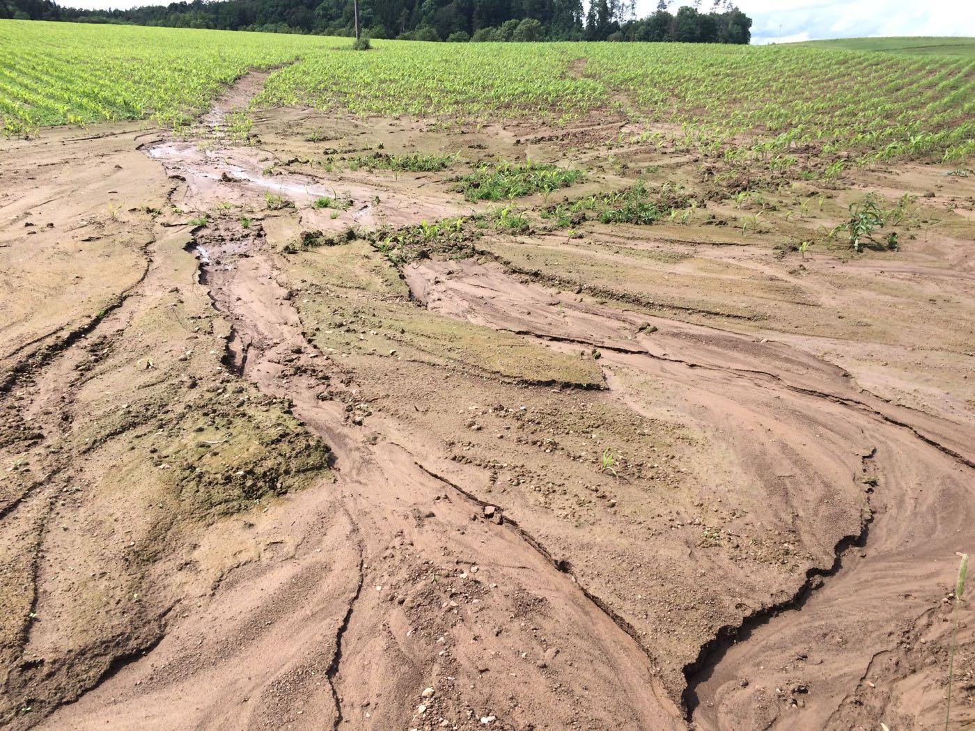 Artikel: Erstmals weltweiter Phosphorverlust durch Bodenerosion quantifiziert