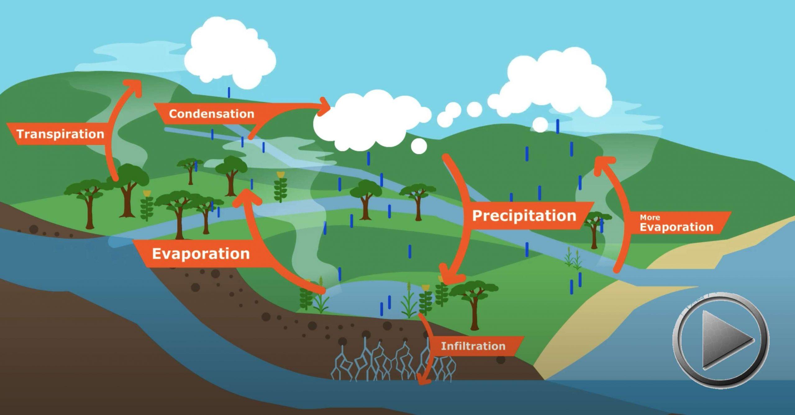 Den kleinen Wasserzyklus wieder schliessen, durch Vegetation und Humusaufbau