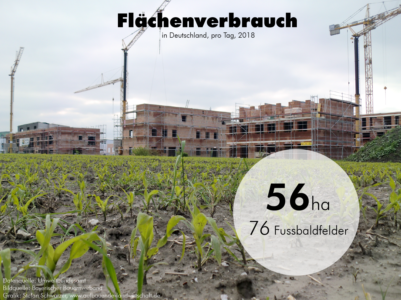 Flächenverbrauch von 56 Hektar pro Tag (!!) in Deutschland