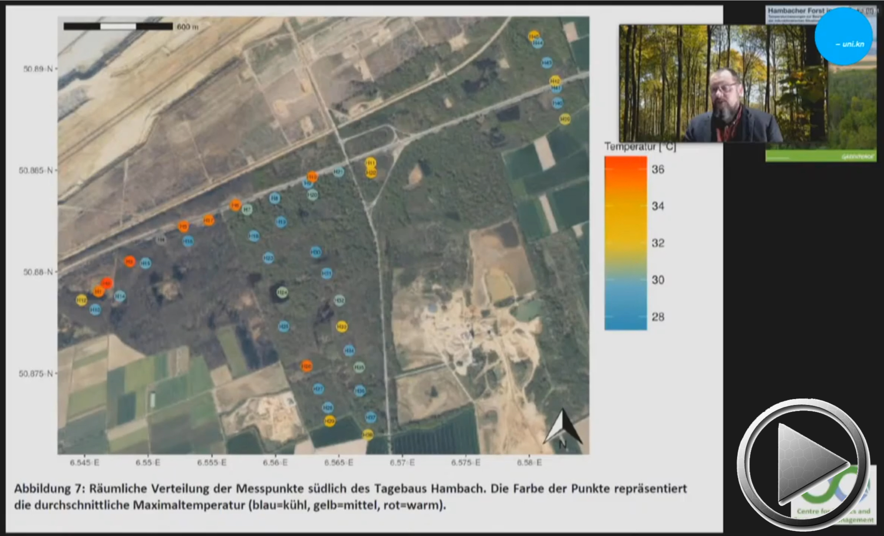 Forstwirtschaft und Klimawandel als Treiber einer Waldkrise