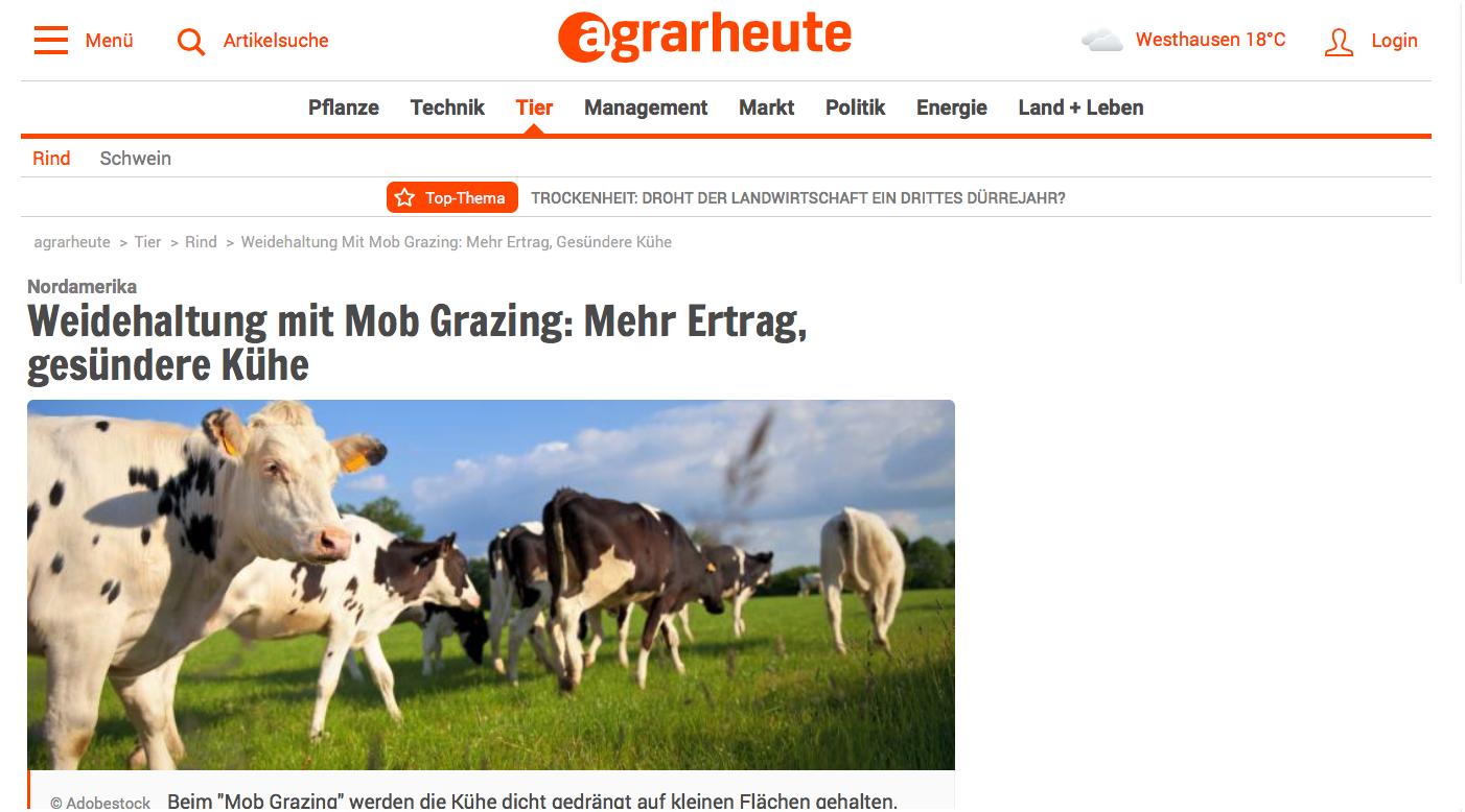 Mob-Grazing in agrarheute