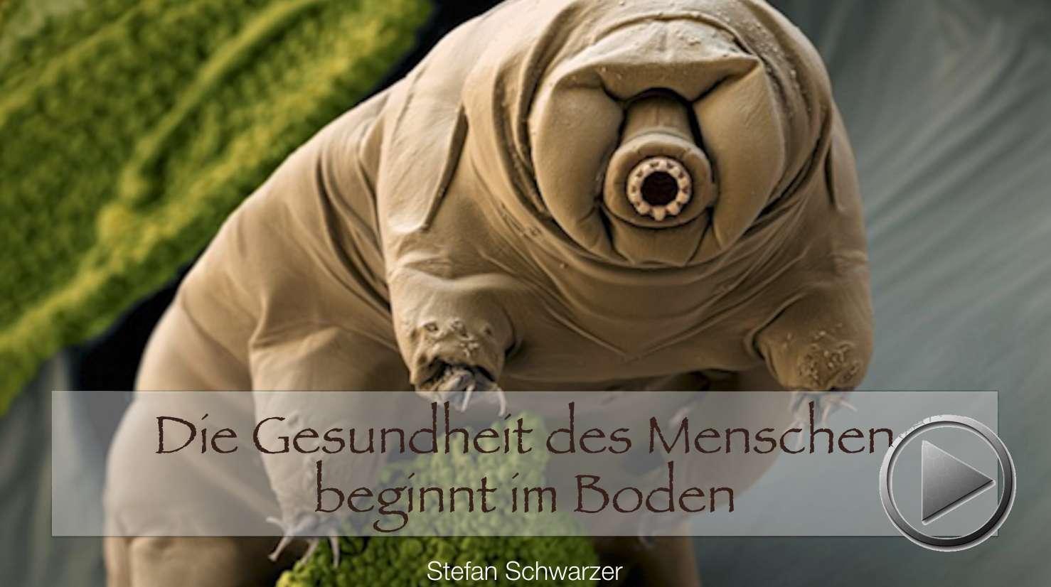 Präsentation: Die Gesundheit des Menschen beginnt im Boden. Stefan Schwarzer